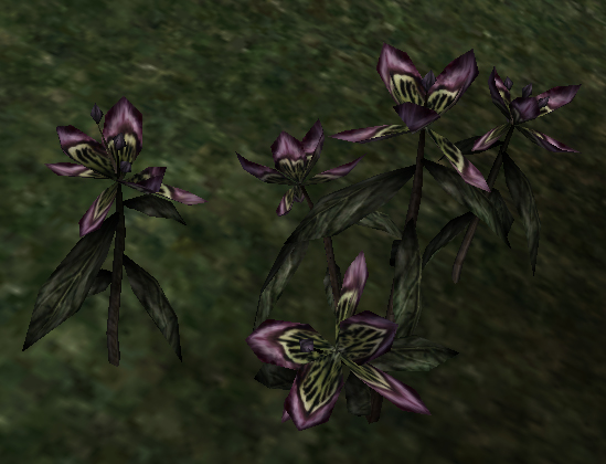 The flora of morrowind an alchemists resource the imperial library black anther mightylinksfo Images