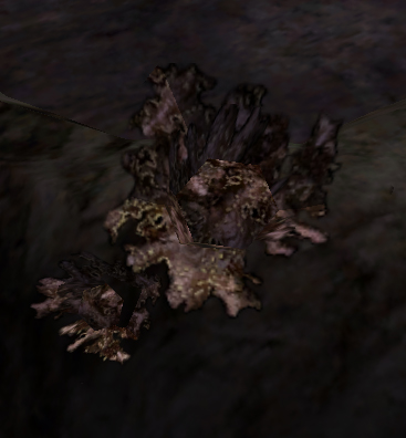 The Flora of Morrowind - An Alchemists' Resource | The