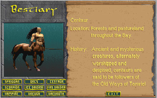 Daggerfall Screen Shot 7