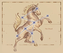 The Steed Birthsign